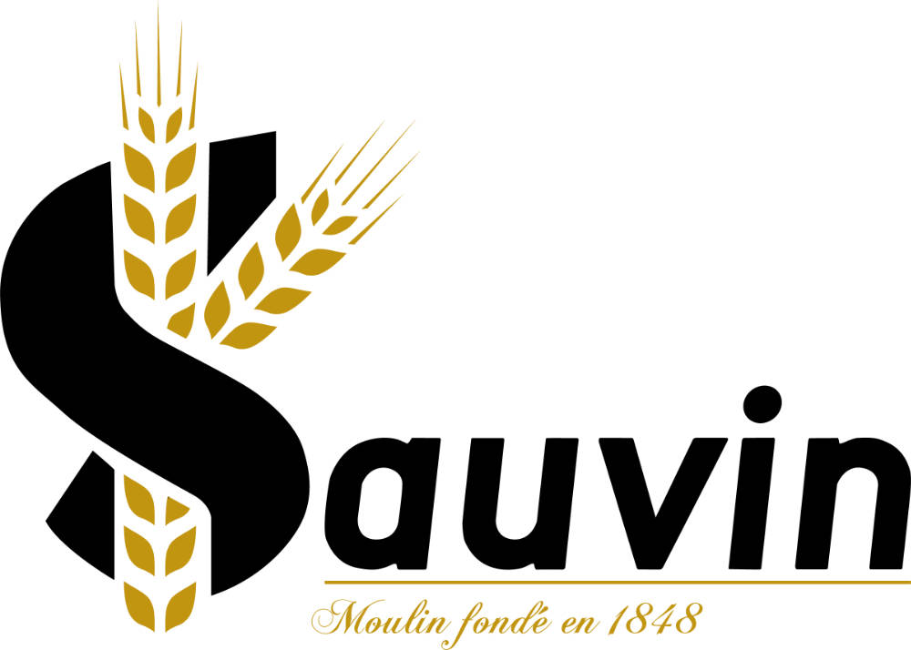 logo sauvin